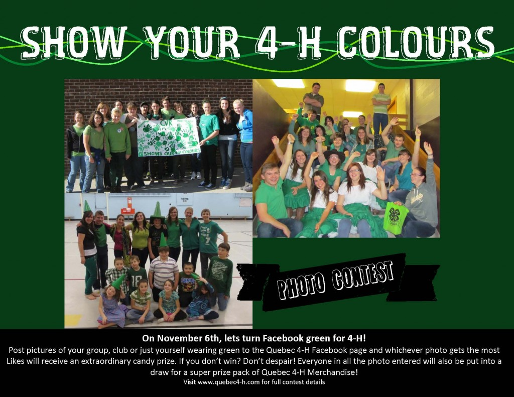 Show your 4-H Colours photo contest